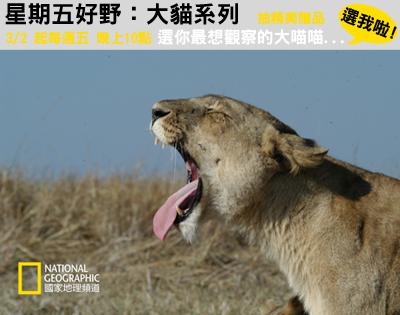 节目,以优美的画面和令人动容的情节,介绍自然界中最凶猛的猫科动物